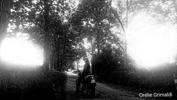 Sur la route entre Orry la ville et Vémars